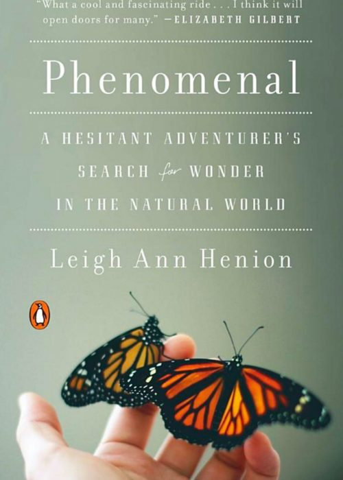 Military Spouse Book Review | Phenomenal by Leigh Ann Henion